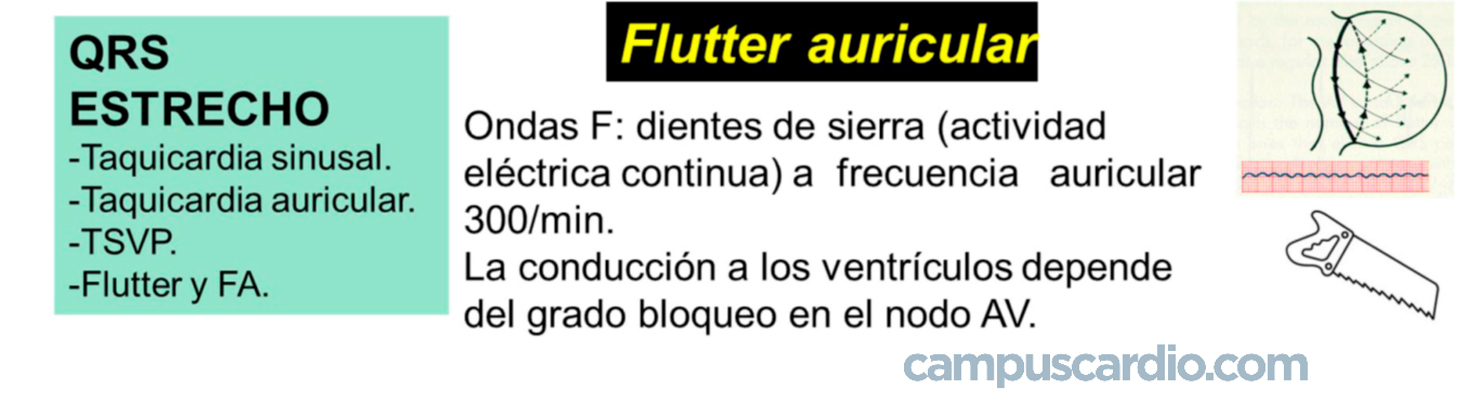 FLUTTER auricular